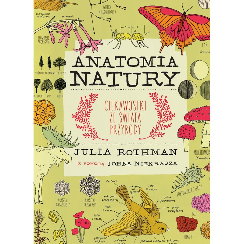 anatomia-natury.jpg
